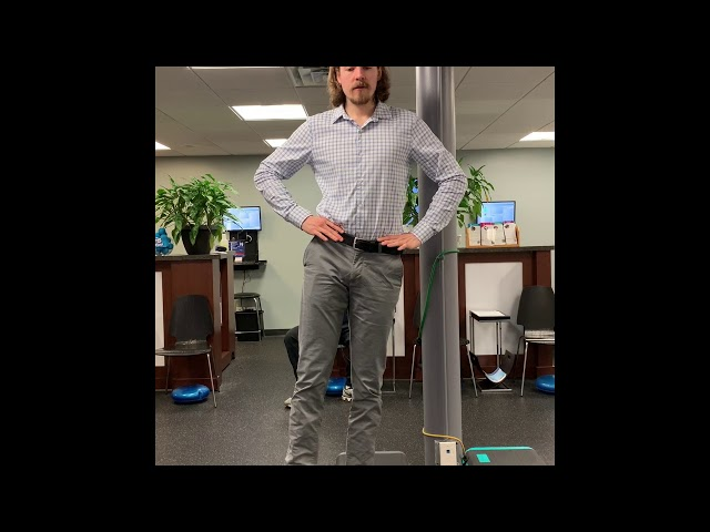 Standing Lateral Pelvic Rotation