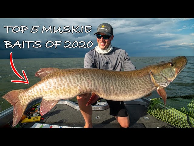 BEST MUSKY FISHING BAITS (My top 5 of 2020) Ultra clear underwater footage