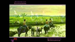 Tinh Que Huong  Dan Tho  The Son  NNS HD