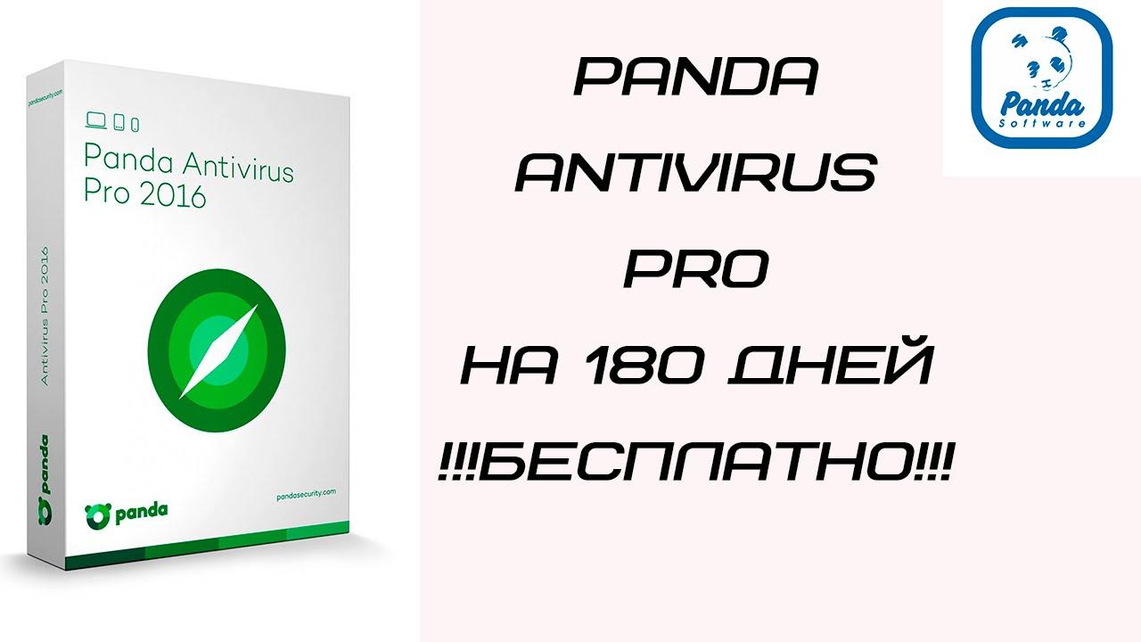 Panda на 180 дней