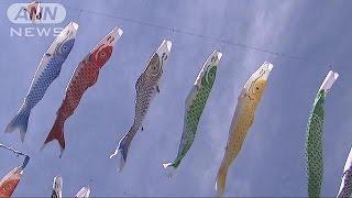 群馬県神流町では「鯉のぼり祭り」が行われていて、名物のこいのぼりを...