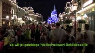 Tips for and Sights of Your Disney World Half and Full Marathons
