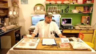 Вешенка на пнях, как появилась методика от funnymushroomschool(Видео