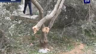 سقوط قذيفة من الجانب السوري على منزل بلواء الرمثا دون وقوع إصابات
