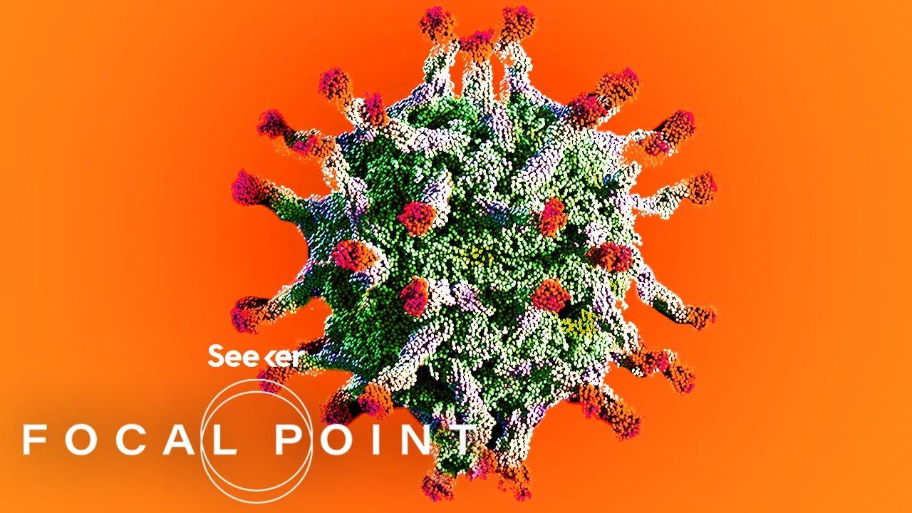 Cât timp supraviețuiește virusul corona pe suprafețe?   CWS