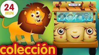 Las Ruedas del Autobús   Animales Salvajes y Sonidos de Animales   ChuChu TV