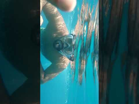 Diving in yanbo
