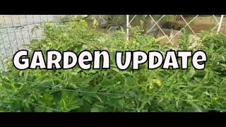 Garden Puppy & Life Update