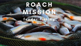 ФИДЕРНАЯ РЫБАЛКА ЛОВЛЯ ПЛОТВЫ ROACH MISSION FEEDER FISHING