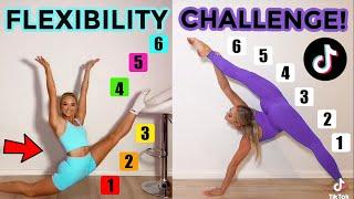 FLEXIBILITY TIK TOK CHALLENGE! (TWIN VS TWIN)