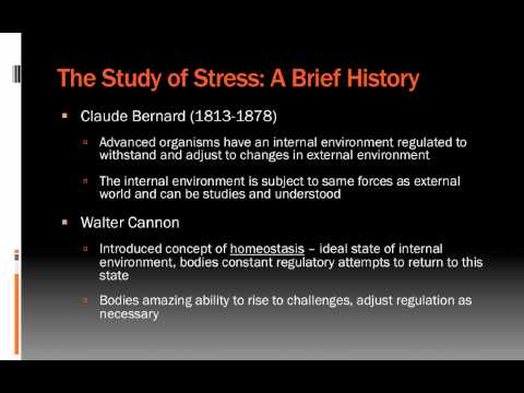 Lecture 4.1: Introduction to Stress