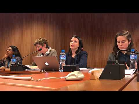 Sexuality Education: Rights & Realities Panel at HRC 37