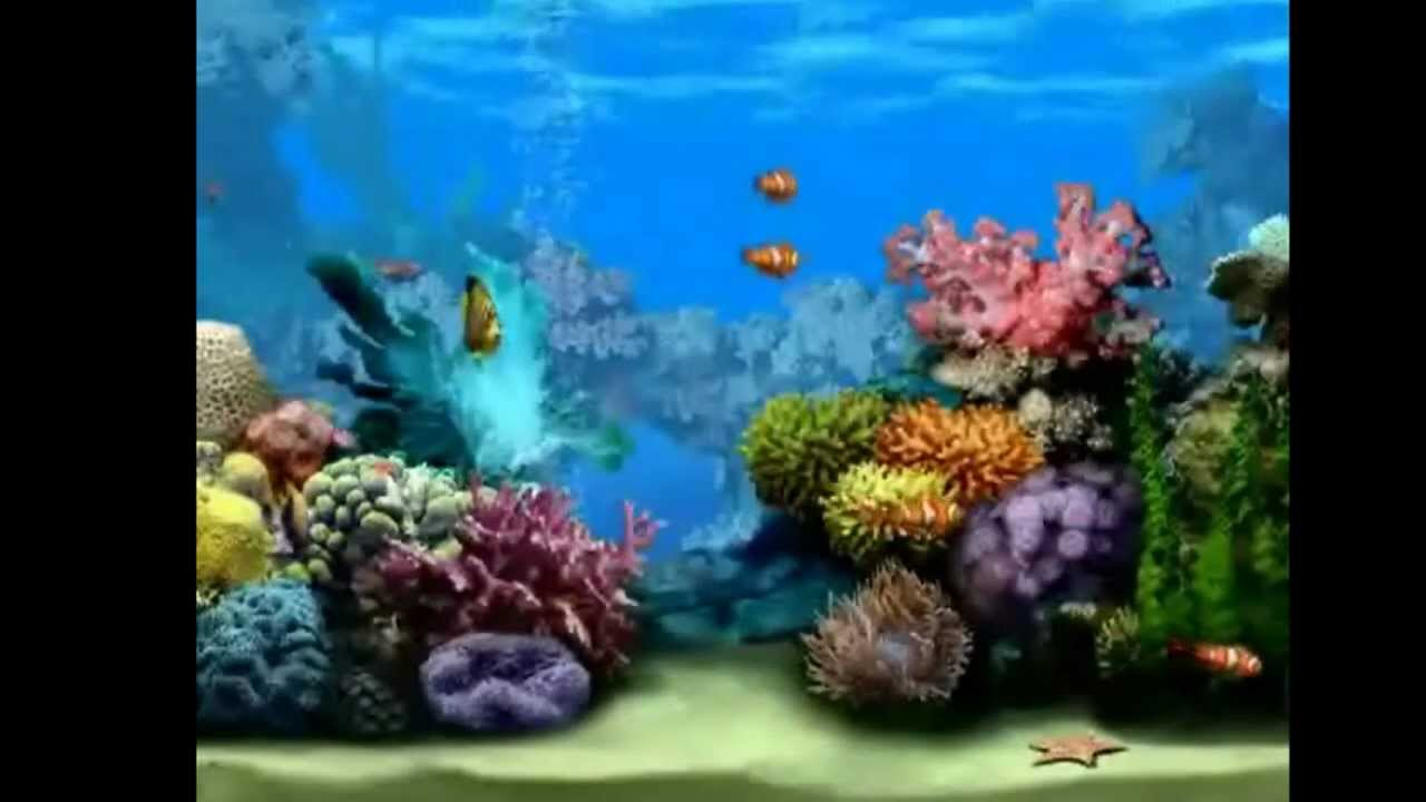 FREE Aquarium Screensaver, Turn Your Screen Into A Living Fishtank! - YouTube