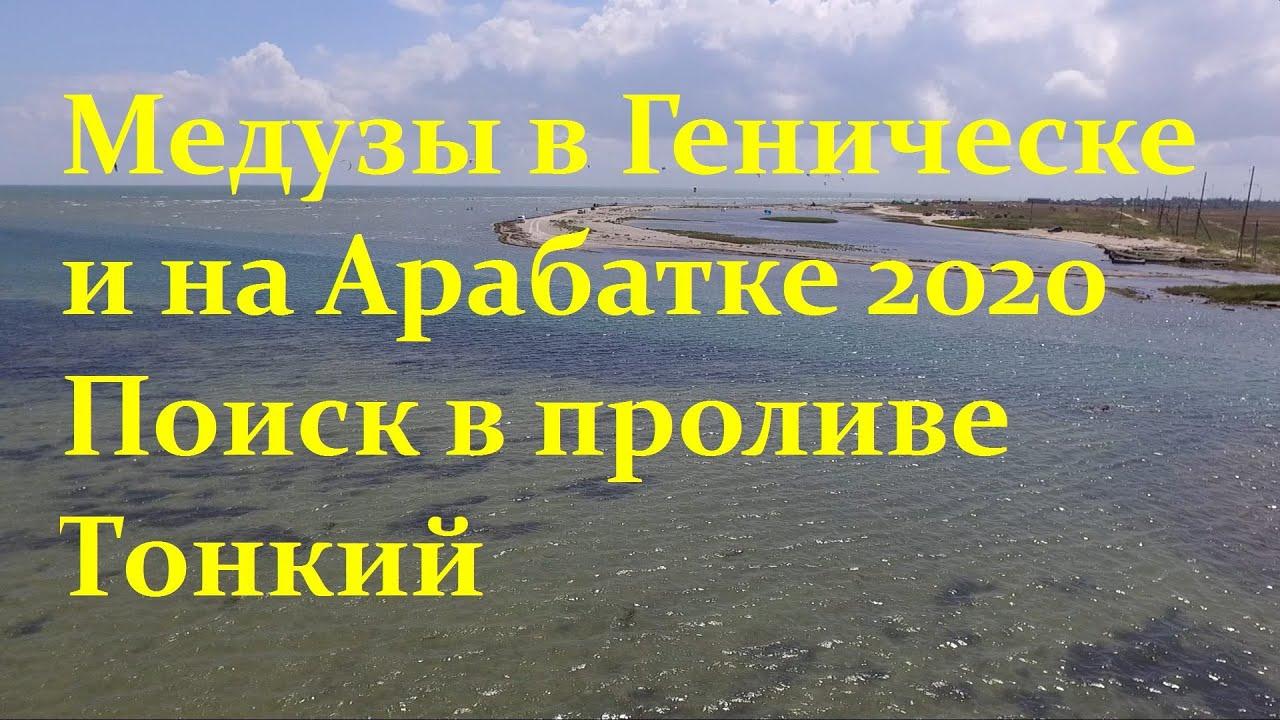 На Азовском море в поисках медуз на Арабатской стрелке у генического пролива Промоина