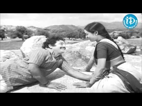Maavi Chiguru Song - Seetha Mahalakshmi Movie Songs - ChandraMohan - Talluri Rameswari