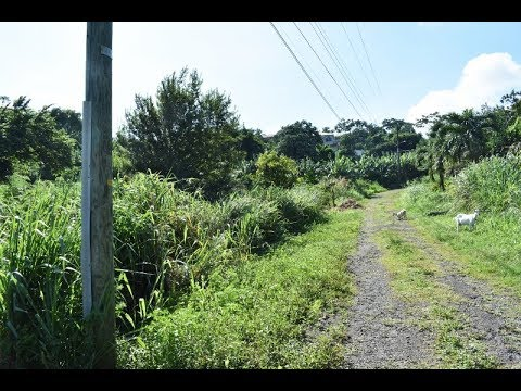 Land for sale in Red Gate St David's Grenada West Indies (Touched Reality Real Estate Services)