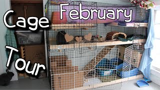 February Rabbit Cage Tour-2015