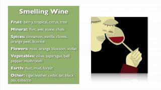 Wine Basics From My Wine Smarts