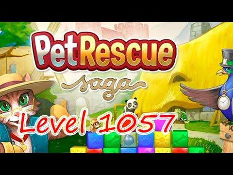 Pet Rescue Saga Level 1057 (NO BOOSTERS)