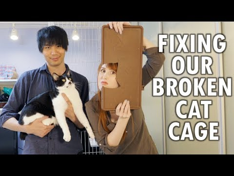 Fixing our broken cat cage (with our cats' help!)