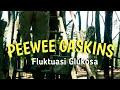 Pee Wee Gaskins - Fluktuasi Glukosa // lagu