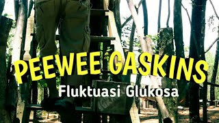 Video Pee Wee Gaskins - Fluktuasi Glukosa // lirik lagu download MP3, 3GP, MP4, WEBM, AVI, FLV Maret 2018