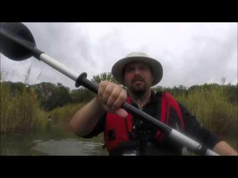 Kayaking through Moll Dyer's nasty little bush