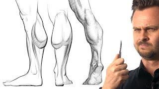 How to Draw Calf Muscles - Leg Anatomy for Artists