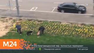 Смотреть видео Новости России за 13 мая - Москва 24 онлайн