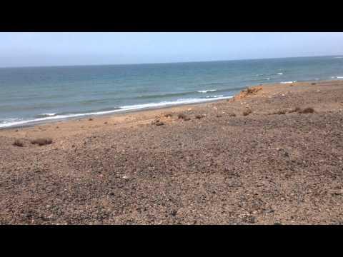 Somaliland frankincense trip near the ocean