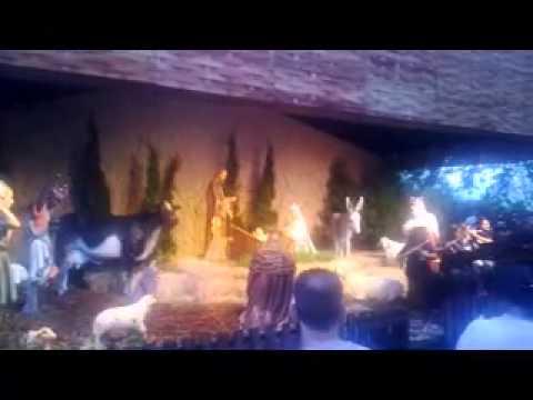 Christmas songs in aparecida basilica, SP, Brazil