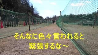 ミニピン(ミニチュアピンシャー)ラティが愛知県に遠征に行ってきまし...
