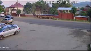 Video socant oameni aruncati din caruta vicov suceava