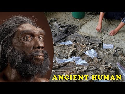 Evidence of 700,000-Year-old Humans Found in the Philippines