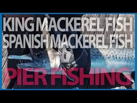[Pier Fishing #46] King mackerel and Spanish mackerel fishing with Got-Cha jig - Panama city, FL
