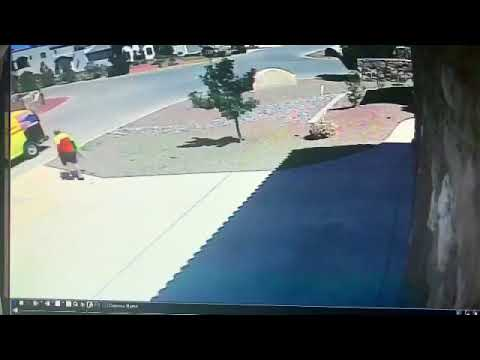 DHL Delivers And Steals Your Package.