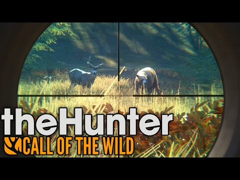 Rare Cinnamon Black Bear Hunting! - TheHunter: Call of the W