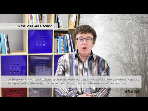 Sam Goldstein and Nesplora Aula School - Nesplora Technology & Behavior