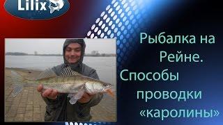 рыбалка на рейне