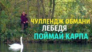 ЧЕЛЛЕНДЖ ОБМАНИ ЛЕБЕДЯ ПОЙМАЙ КАРПА карпфишинг