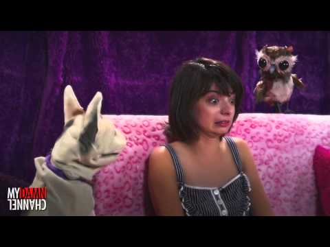 The Love Me Cat   Sing Along with Kate Micucci