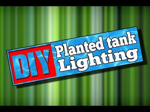 DIY Planted Aquarium Lighting #100