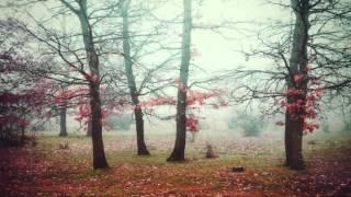 Thunderthief ft. Kyle Coy - Fireworks (Halcyon Remix)