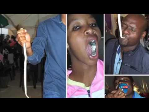 Pastor Makes Church Members Eat Snakes Rat Ants And