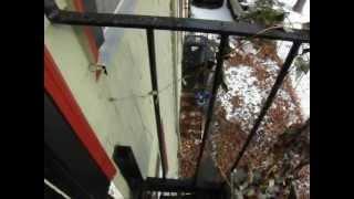 fire escape inspection load test certifications cambridge ma 866 649 0333 fireescapeengineers com
