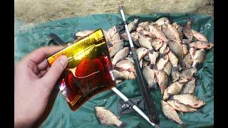 Эта дешевая добавка косит всю рыбу если добавить её в прикормку своими руками