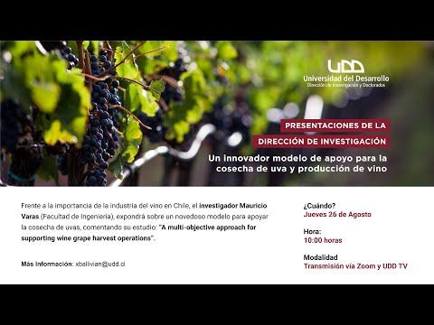 Presentación DID | Un innovador modelo de apoyo para la cosecha de uva y producción de vino