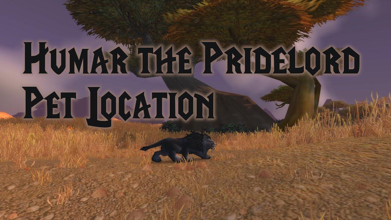 Humar The Pridelord Rare Elite Hunter Pet Location Classic Wow Youtube