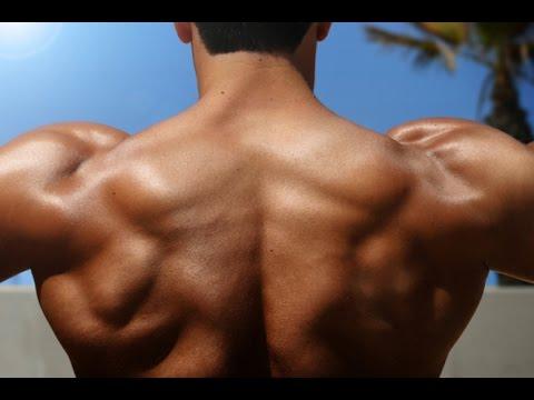 como tener hombros grandes y definidos