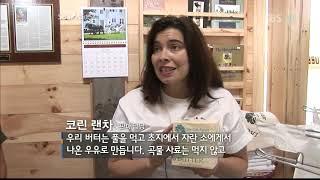 [SBS 스페셜] 옥수수의 습격 1부(잃어버린 풀의 기…